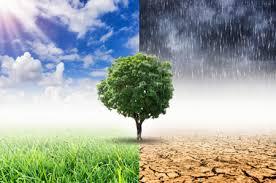Η κλιματική κρίση κάνει τον γύρο του κόσμου – Climate crisis is all around the world